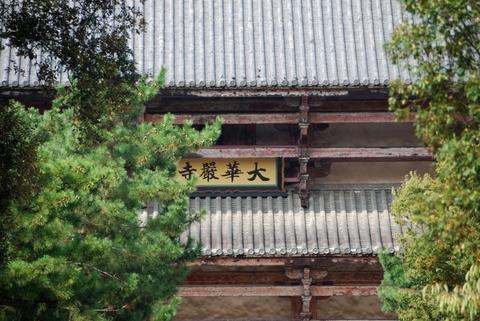 Nara_05.jpg